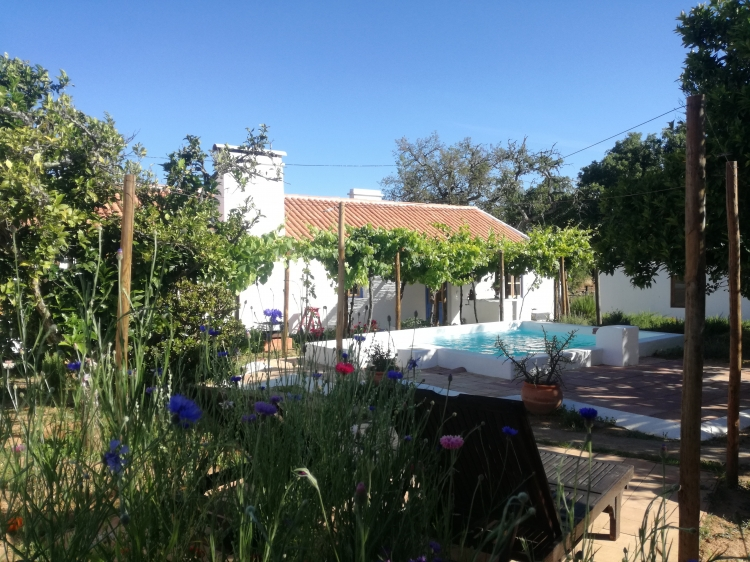 Beach melides carvalhal and comporta house for rent villa vacational