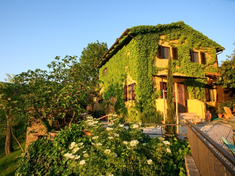 B&B Le Due Volpi Agirturismo Hotel Tuscany con enacanto