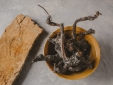 Buenavista Lanzarote Country Suites Secretplaces