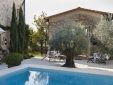 Breakfast in courtyard between pool, poolhouse and olive trees
