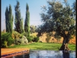 Sunny House 3 Rooms Grandola beautiful garden