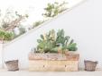 masseria fulcignano puglia hotel b&b