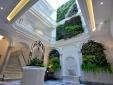 El Armador Casa Palacio Plants Marble