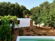 Casa House bombom Comporta Carvalhal for rent beautiful melides hollidays self catering