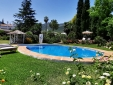 Pool and Surroundings