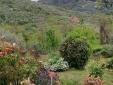 Bon appetit - pasta al pomodoro fresco