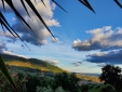 fried zucchini flowers with anchovies and tomatoes