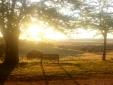 traditional Country house Lagar el Alzotano Spain Extremadura swimming pool