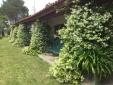 Herdade do Brejo da Amda Hotel comporta casa rural con enacanto