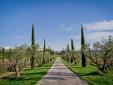 Domaine des Andéols, charming hotel, luxury apartments, Saint-Saturnin-les-Apt, Provence, France