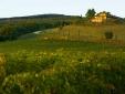 Conti di San Bonifacio Wine Resort hotel tuscany