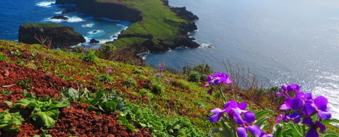 the beautiful Portuguese island