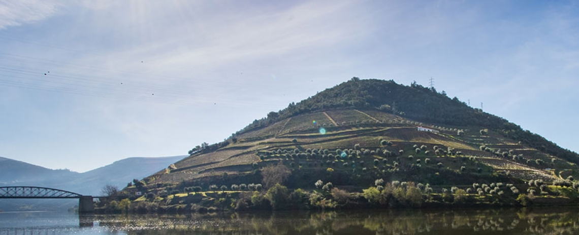 Douro & North