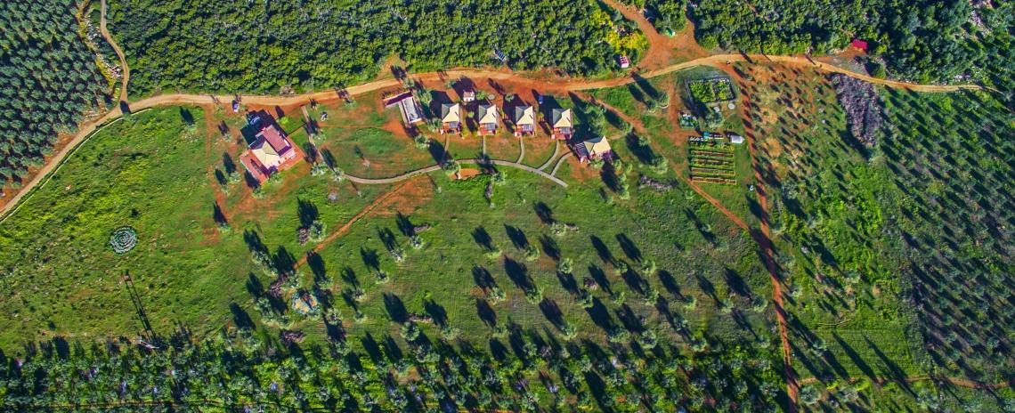 Eumelia Organic Agrotourism Farm